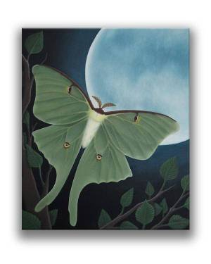Luna Moth – Acrylic Paint Fine Art Original