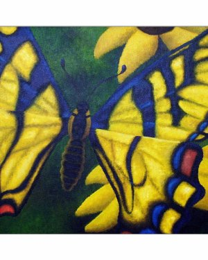 Giclee Print - Transform And Be Free - Giclee Print Of Acrylic Paint Butterfly Fine Art