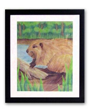 Totem Animal Art - Beaver - Totem Animal Watercolor Pencil Original Art And Printed Products