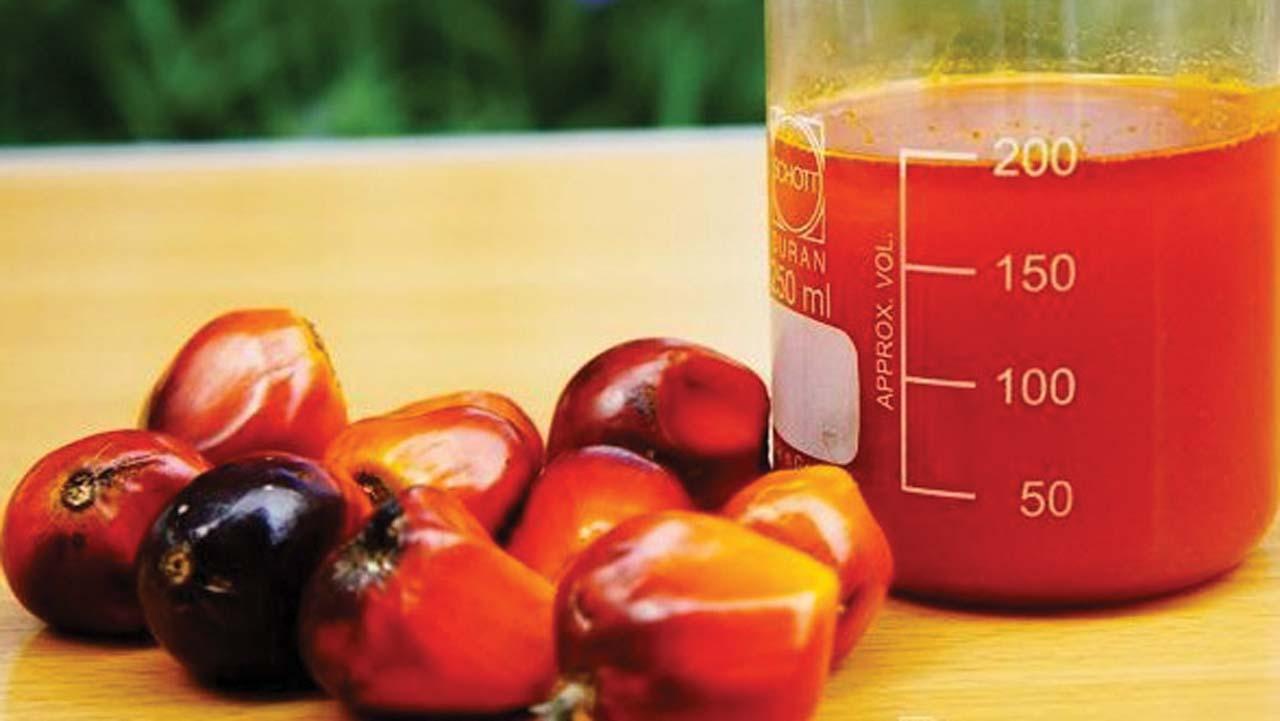 BEWARE! Poisonous Palm Oil Now In Market – NAFDAC warns