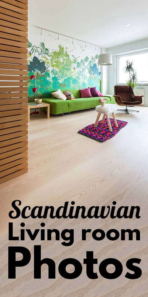 25 Beautiful Scandinavian Living room Photos.