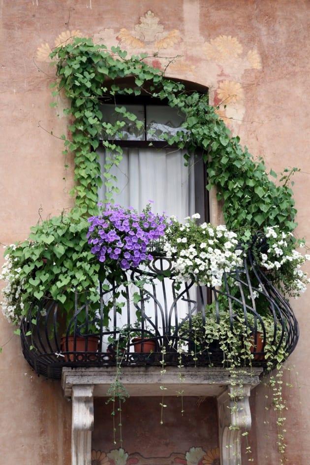 Astonishing Balcony Garden Ideas