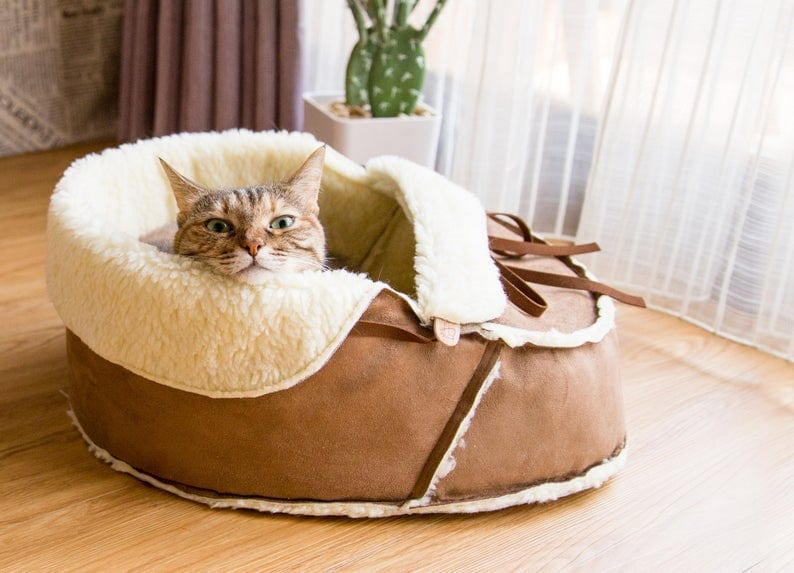 Creative Boot Shaped Bed for you Pet