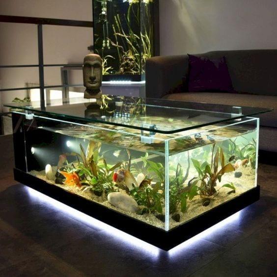 Modern Home Aquarium Ideas