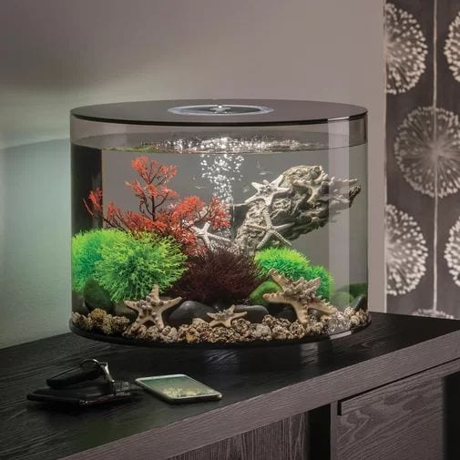 Stunning Fish Tanks for your beautiful homes