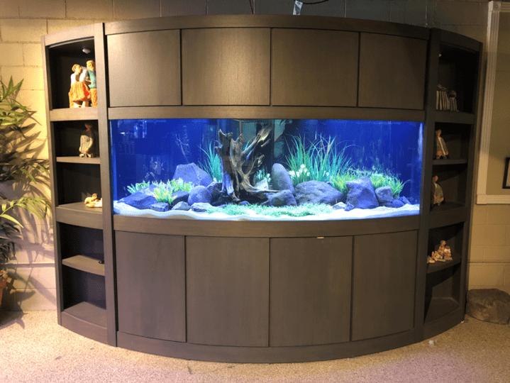Unique Home Aquarium Ideas