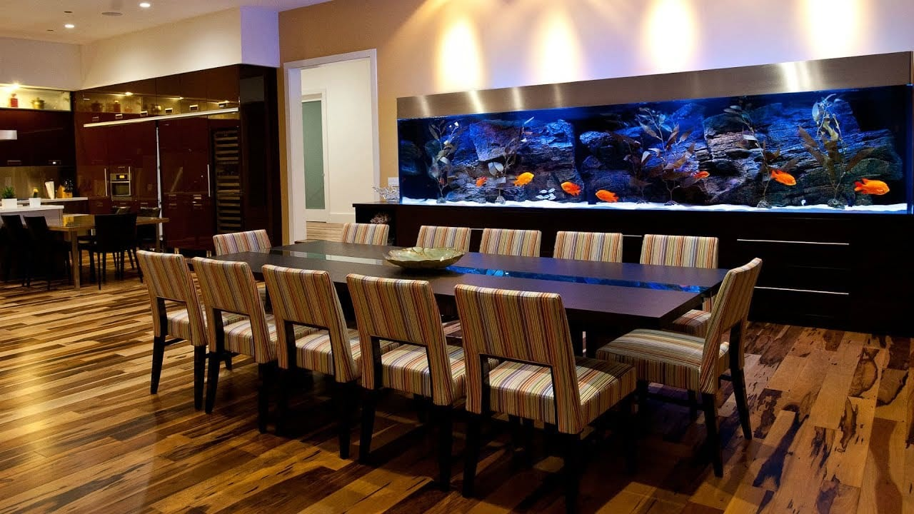 Unique Home Aquarium for Living Room