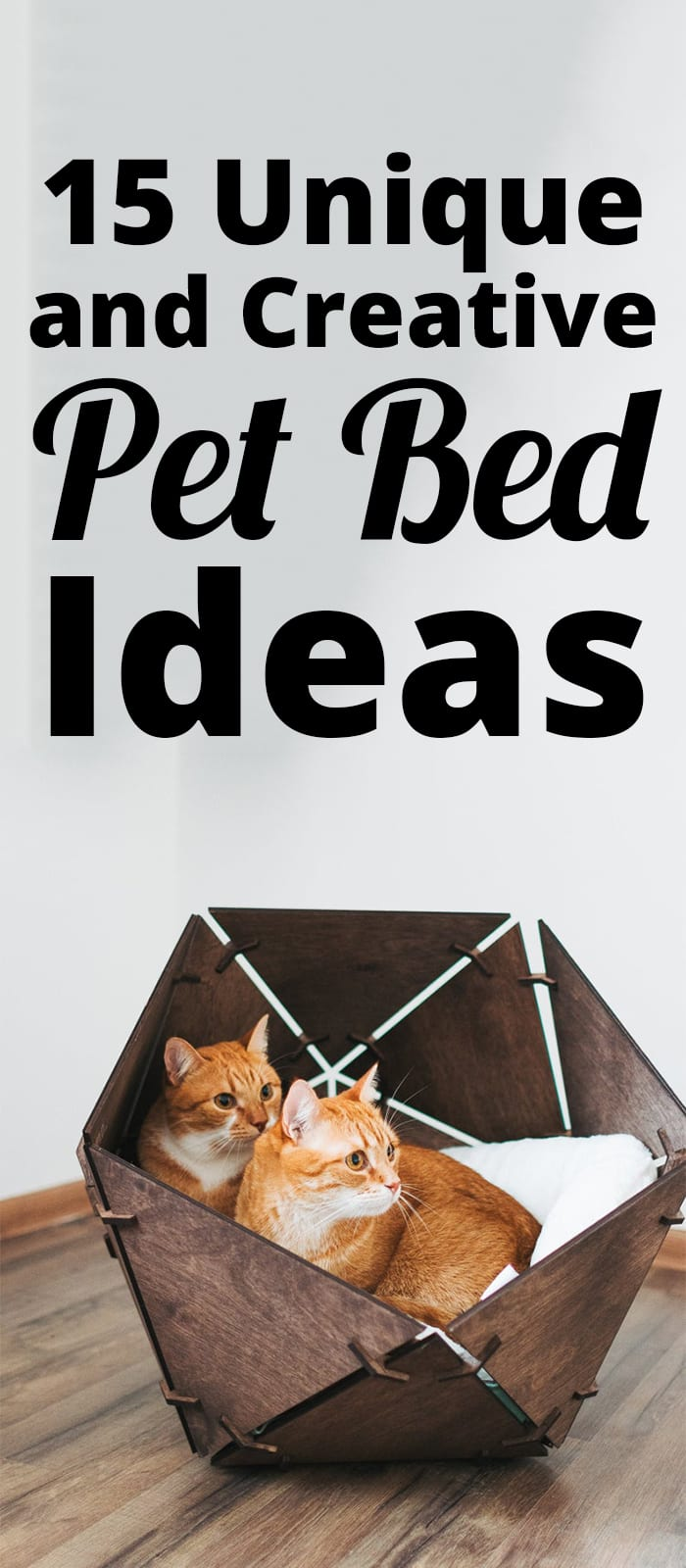 Unique and Creative Pet Bed Ideas
