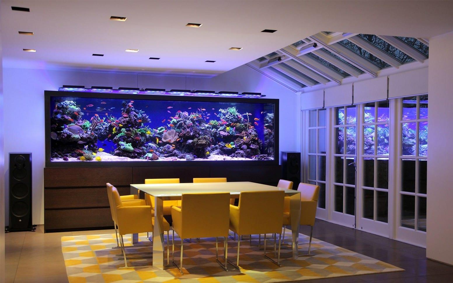 21 Stunning Home Aquarium Designs