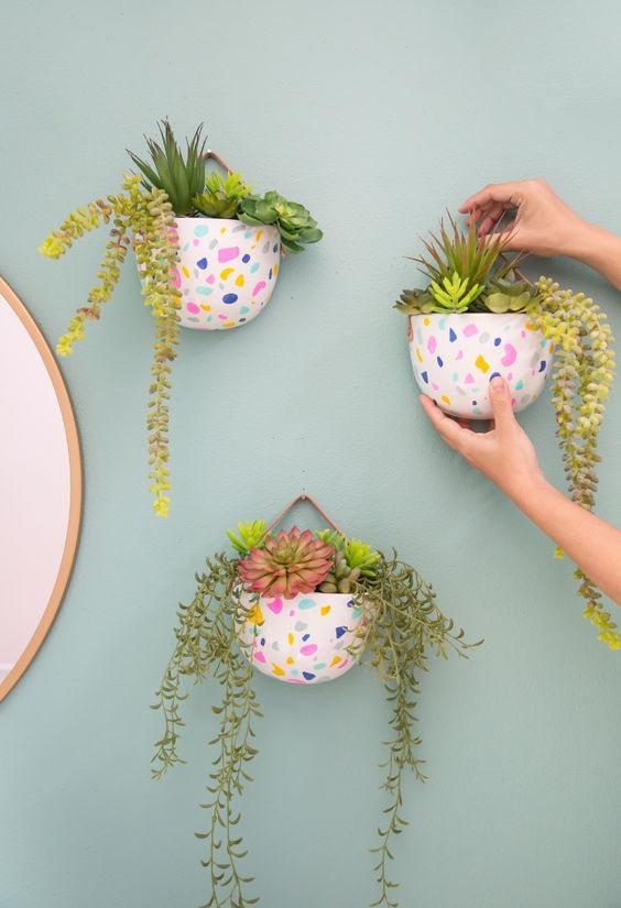 Cute Small Plant Plots for Indoor Plants