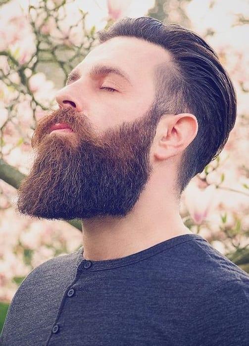 classic beard