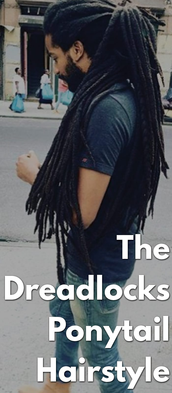 The Dreadlocks Ponytail Hairstyle