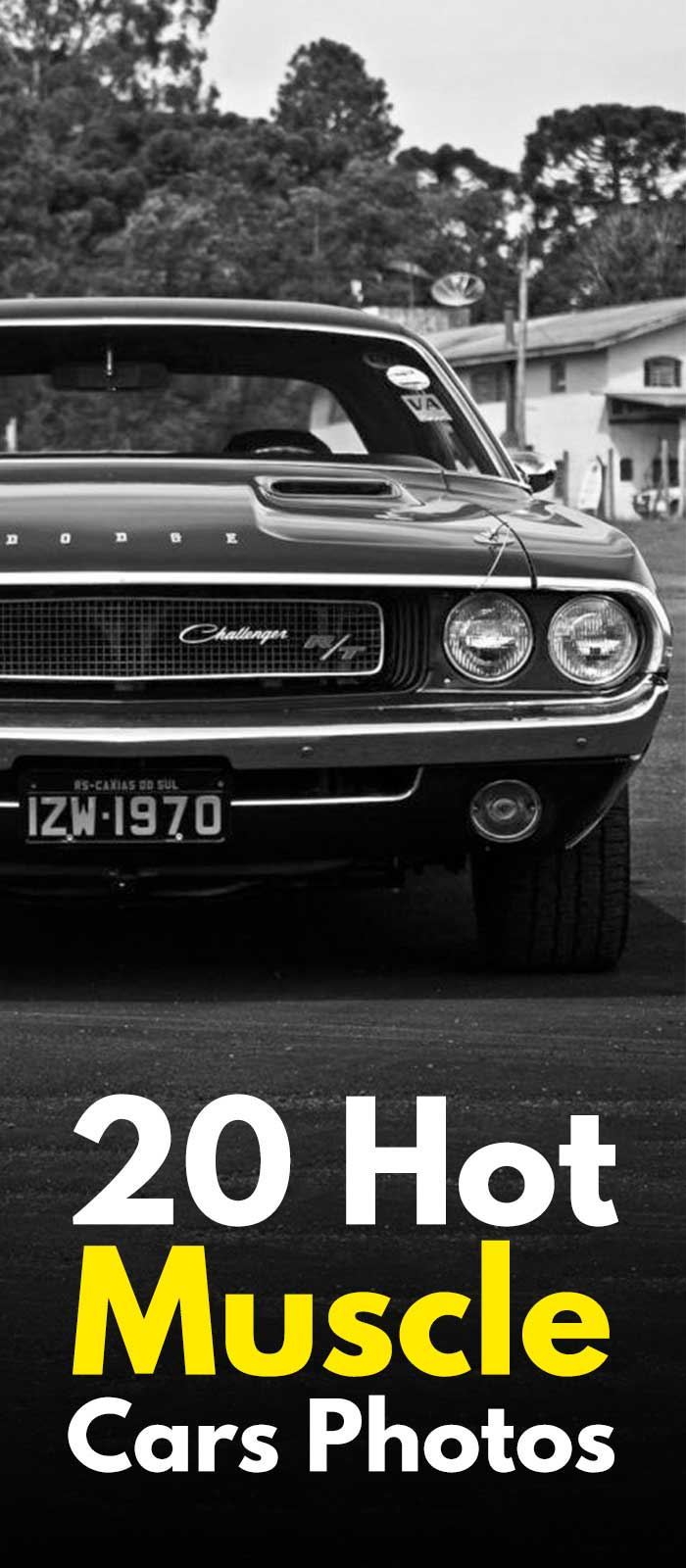 20 Hot Muscle Cars Photos.