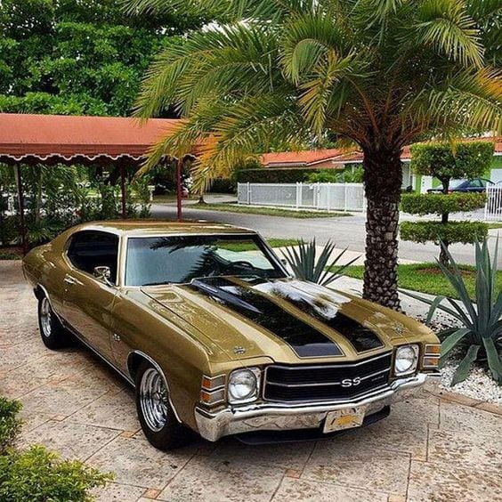 GOLD MUSCLE CAR