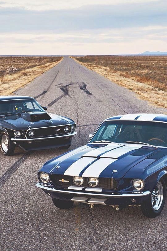 MUSCLE CAR ON THE ROADS