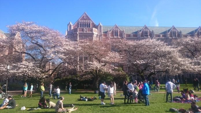 University of Washington. (Photo by Sarah Oberklaid)
