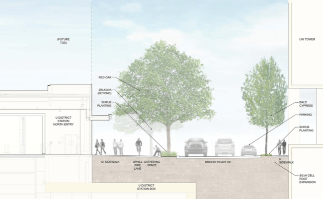 Cross section of Brooklyn Ave NE. (Sound Transit / LMN Architects / Swift Company)