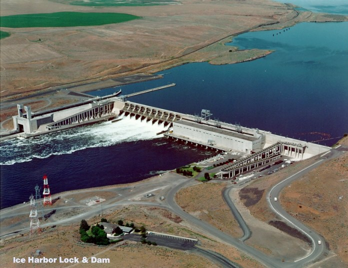 Ice Harbor Lock and Dam is the westernmost of the four Lower Snake dams targeted for removal. (Credit: U.S. Government)