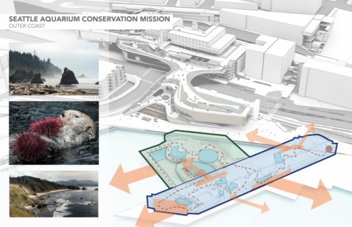 The Aquarium is also planning some shore habitat restoration. (City of Seattle)
