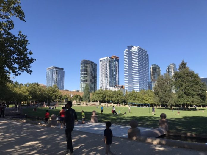 Bellevue's growing skyline from Downtown Park.