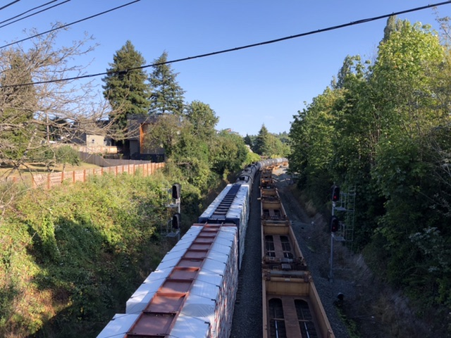 Freight trains moving into the BINMIC area. Unbeknownst to anyone reading the draft report, rail freight is a vital part of the economy of the area. (Photo by Ray Dubicki)