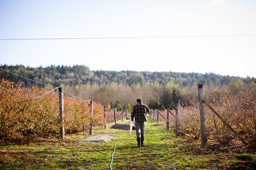 Farmer in a field. (Erinn J. Hale Photography)