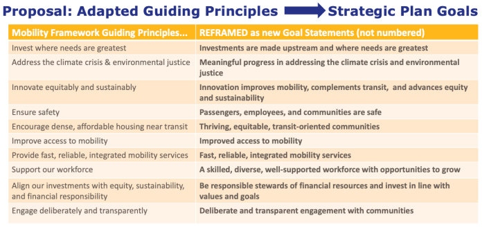 Guiding principles that are to be recast as full goal statements. (King County)