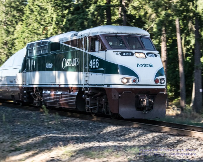 A photo of an Amtrak Cascades locomotive car surrounded by forest.