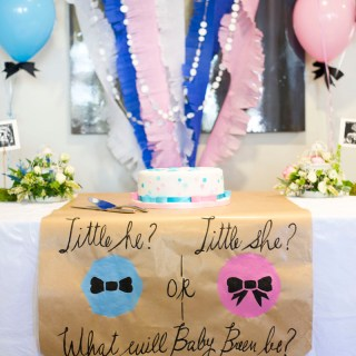 Little He or Little She? Our Gender Reveal Party