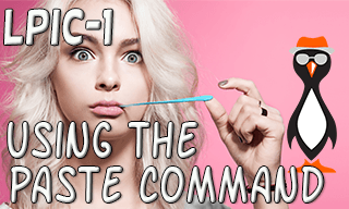 Linux Paste Command