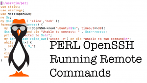 SSH Connections using PERL