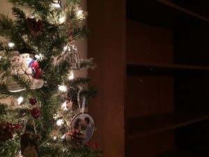 Christmas tree and empty bookshelves