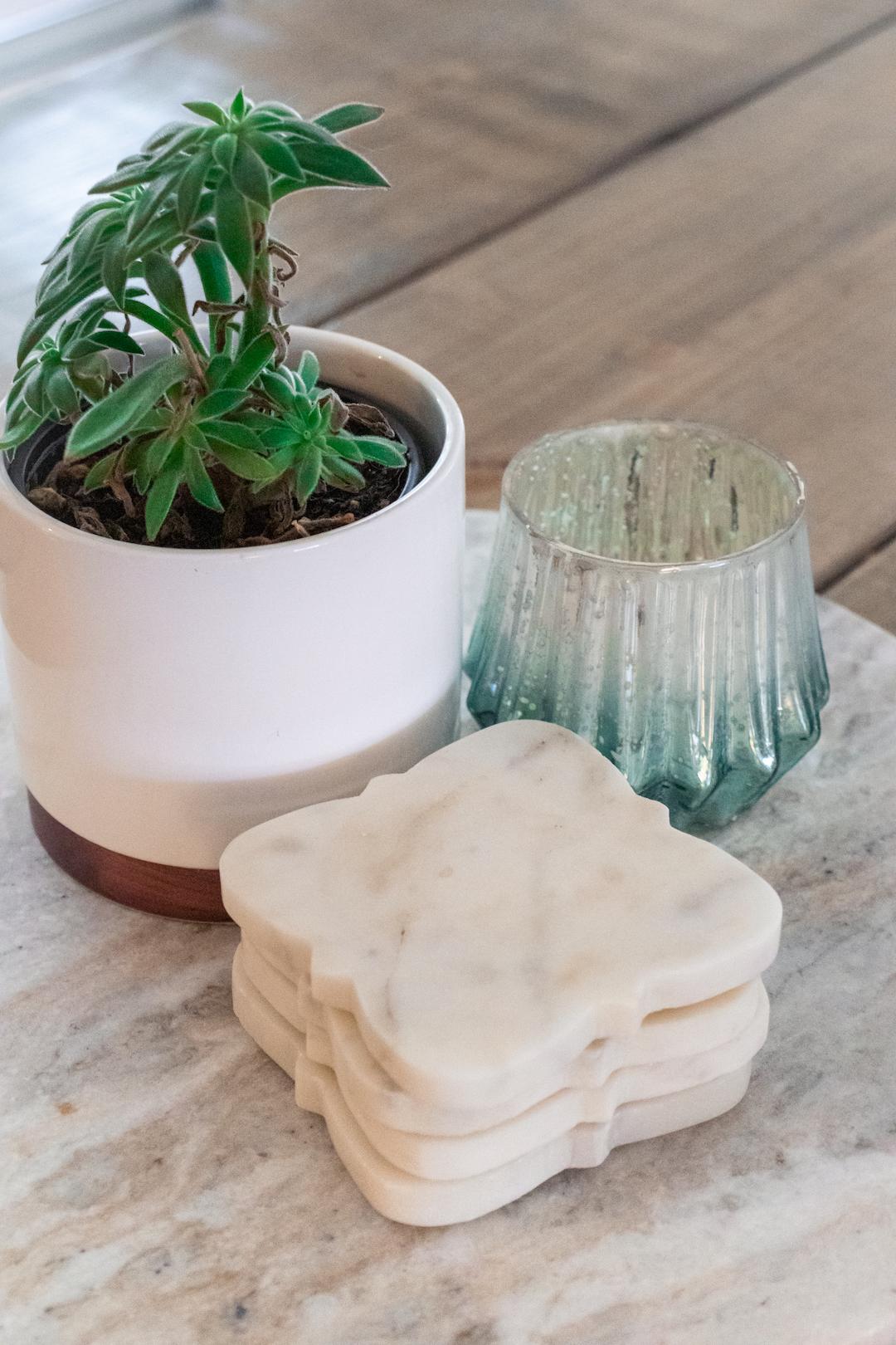 indoor-plants-succulents