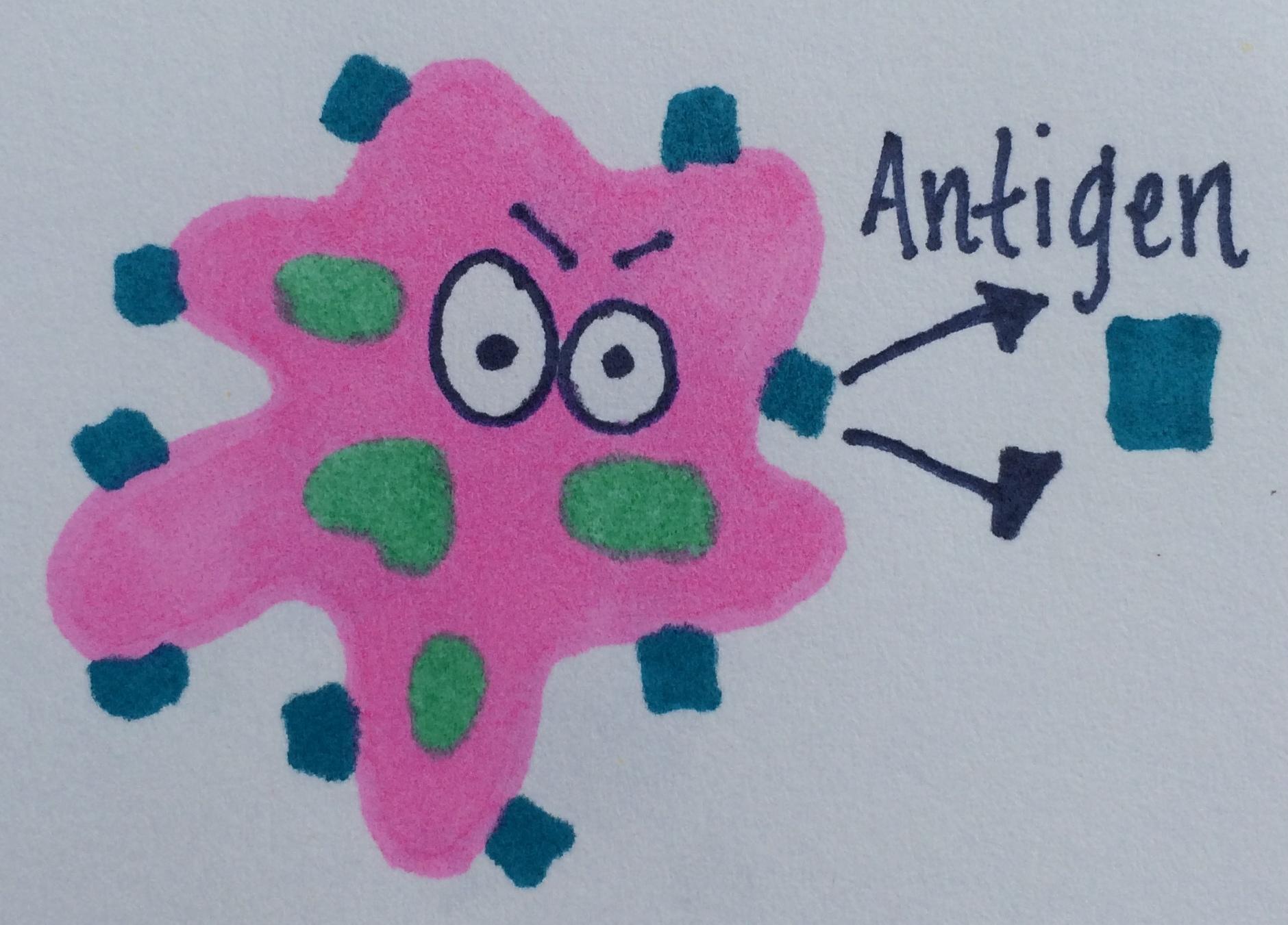 Antigen The Vaccine Mom