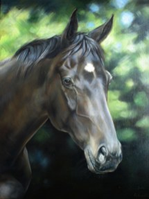 Equine portrait of a horse in Oils