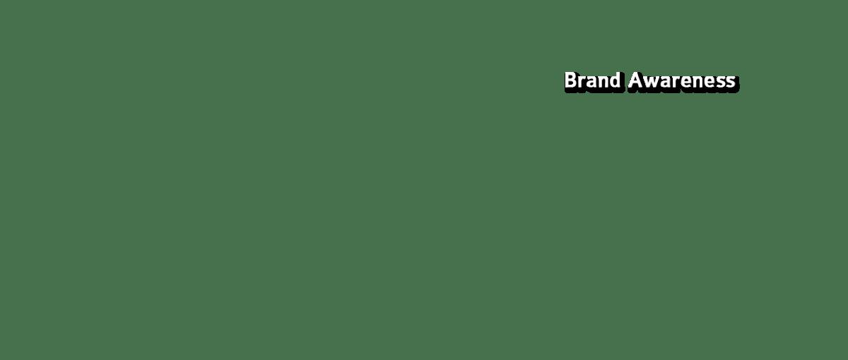 Website Development Brand Awareness