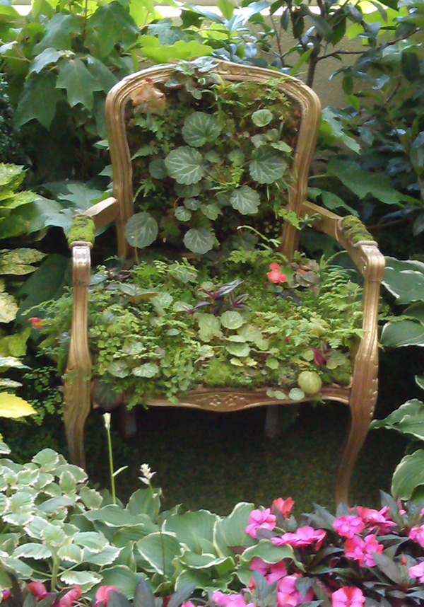 Robyn deserves this chair (c/- Melbourne Conservatory)