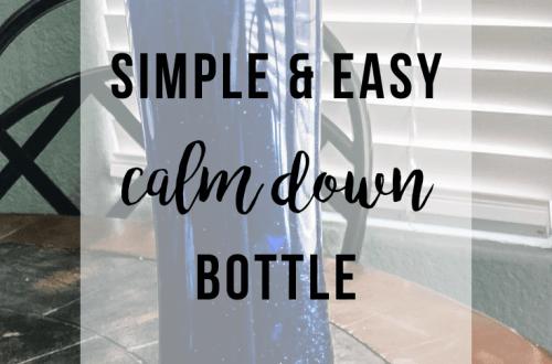 Simple Calm Down Bottle | www.thevegasmom.com