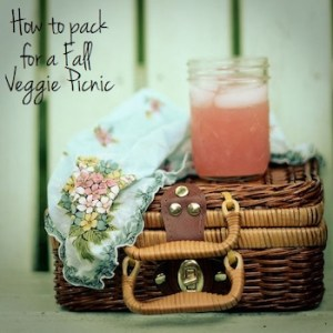 How to Pack for a Vegetarian Picnic