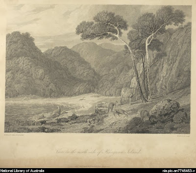 The 1814 William Westall painting, View on the Northside of Kangaroo Island. The scene features seals and kangaroos. Westall also sketched a Cape Arid view from Middle Island.