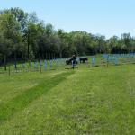 The finished vineyard