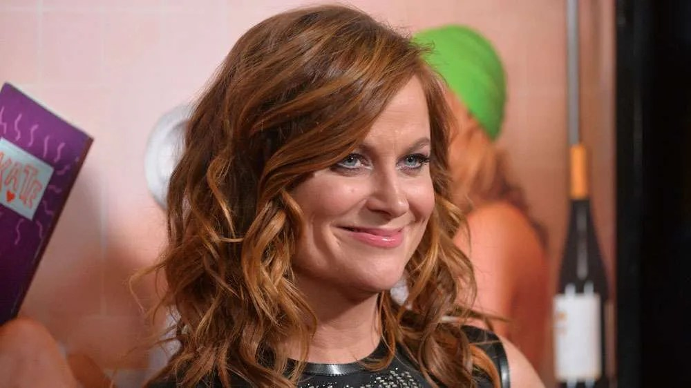 "Amy Poehler, Tina Fey and SNL friends are coming to ""Wine Country"" in a new Netflix movie"