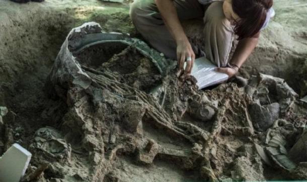 The grave goods in situ being catalogued. (Pierluigi Giorgi / © Antiquity Publications Ltd )