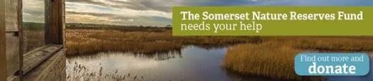 donate somerset wildlife