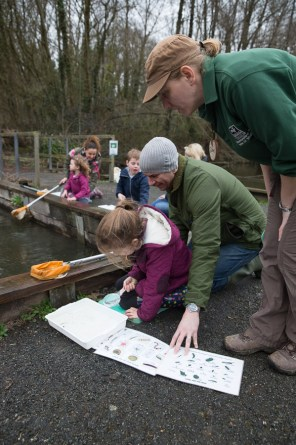 The Southern Co-operative - Wildlife Trust