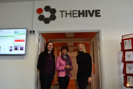 the-hive-1-1-12-16