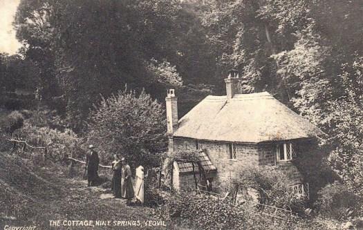 Ninesprings cottage 2