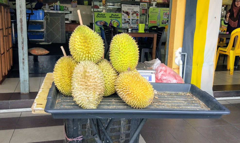 durian-022