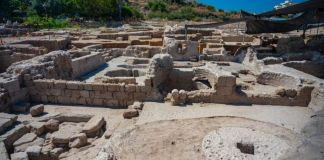 The winepresses at the Yavneh site produced some 2 million liters of wine annually. Drinking wine was common in the Byzantine period, both for adults and children. (Yaniv Berman/Israel Antiquities Authority)