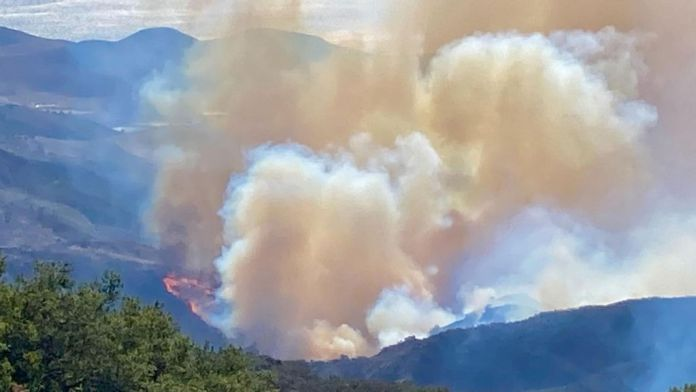 The view of the Alisal Fire as seen from the Reagan Ranch near Santa Barbara, California. (Los Padres National Forest/Zenger).